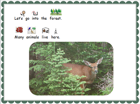 forest2.PNG