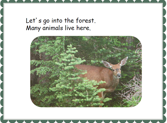 forest4.PNG