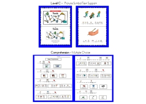 Level C Main Idea (Reading A-Z ) with Picture Symbol Support &Comprehension