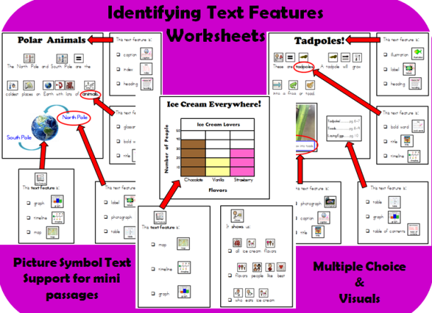 Text Feature Mini Unit for Special EducationELLESL RI 15 – Text Feature Worksheet