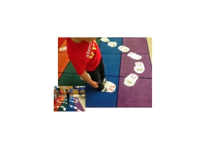 Sight Word Activities & Assessments
