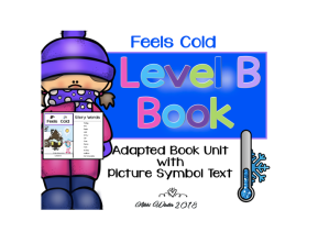 Adapted Level B (Feels Cold) Book Unit & Comprehension(Autism)